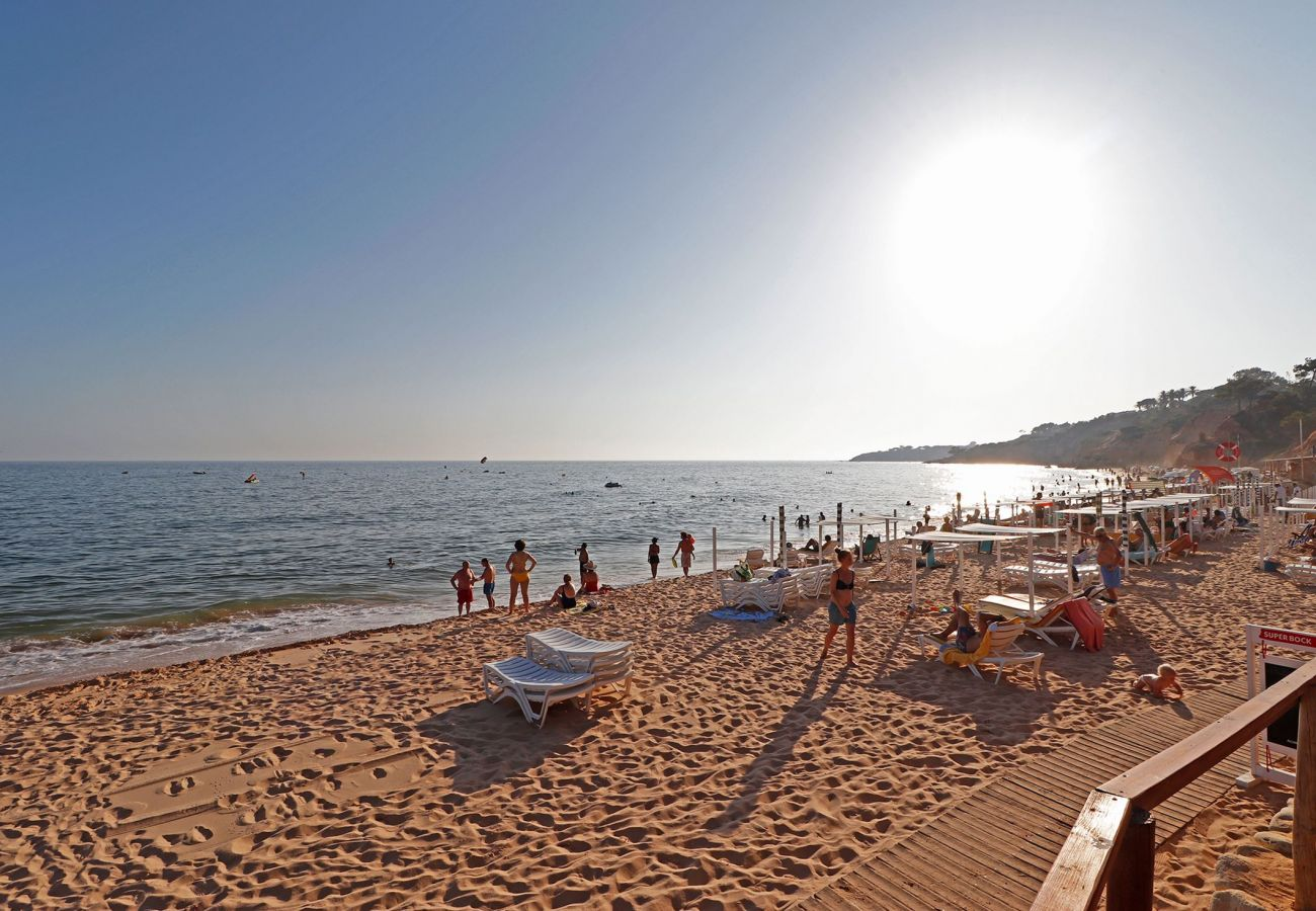 Apartment in Albufeira - ALBUFEIRA TYPICAL WITH POOL by HOMING
